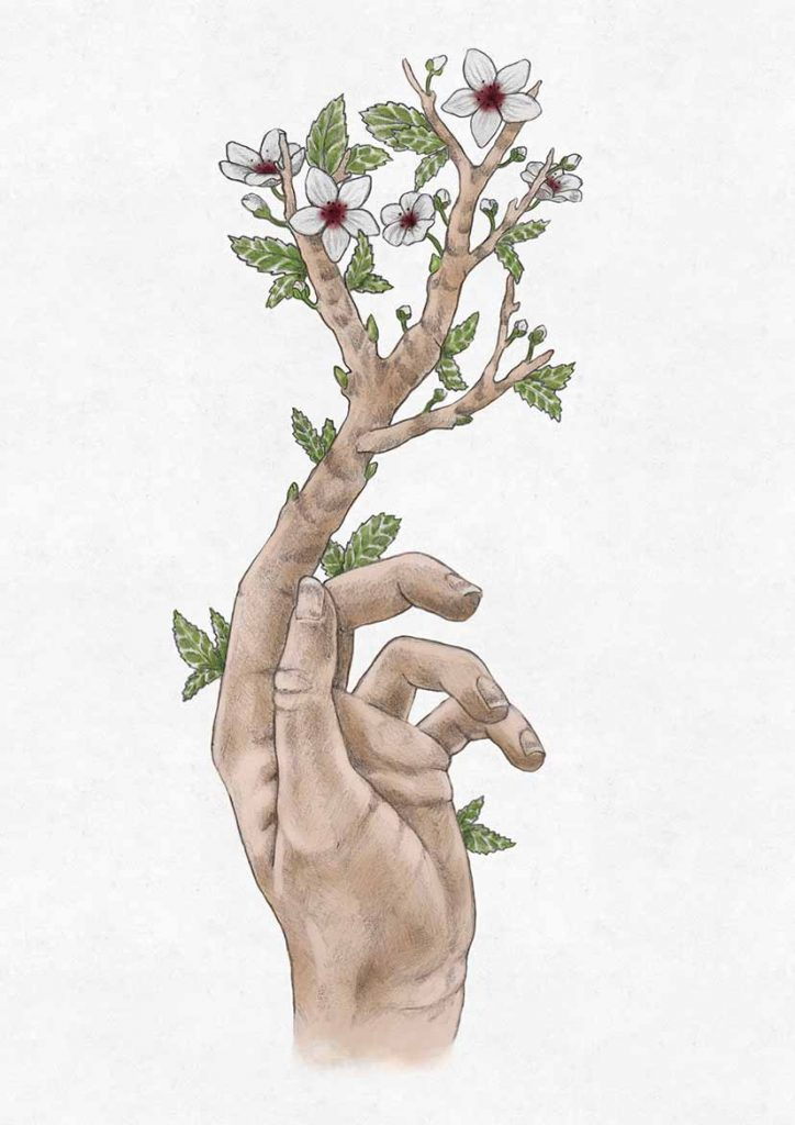 hand internet 1 724x1024 - (human) nature